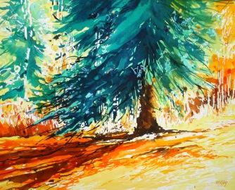 Sun On A Blue spruce 22x28